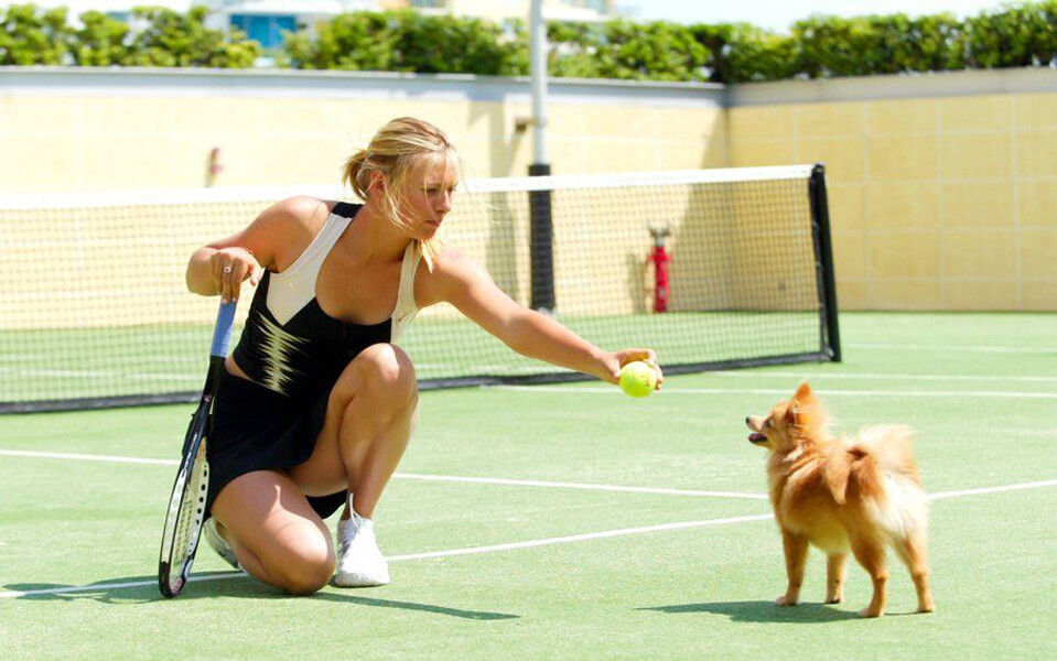 Maria Sharapova dog pin