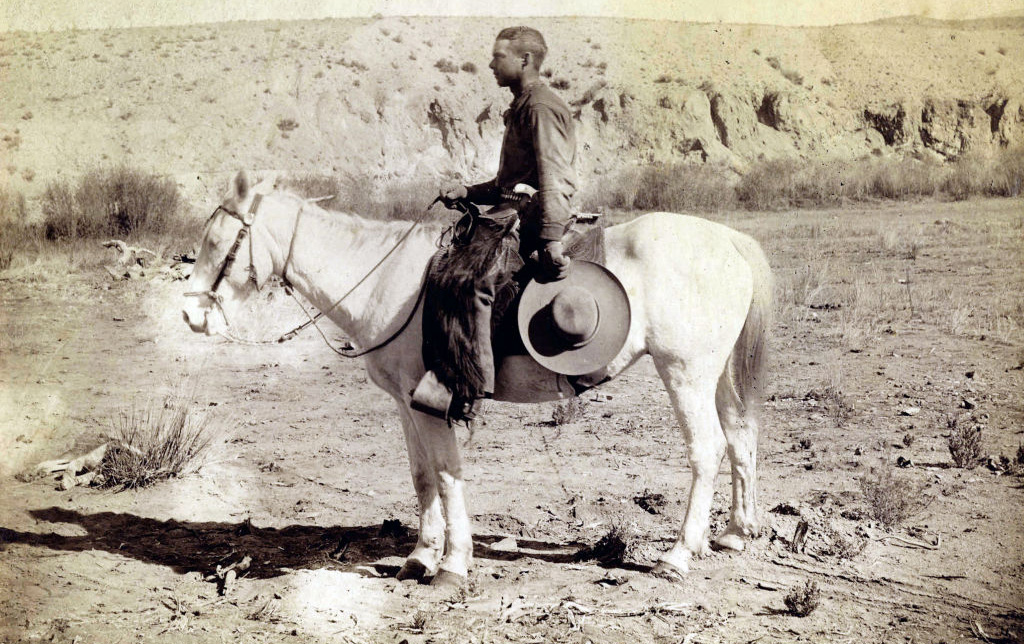 Cowboy on his horse
