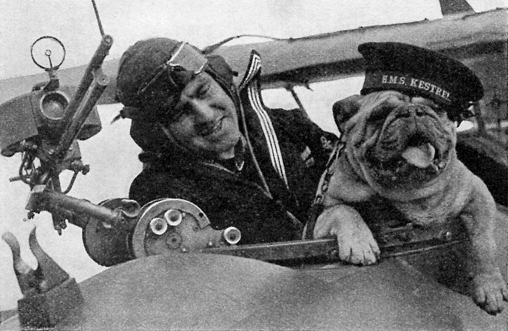 pilot with dog