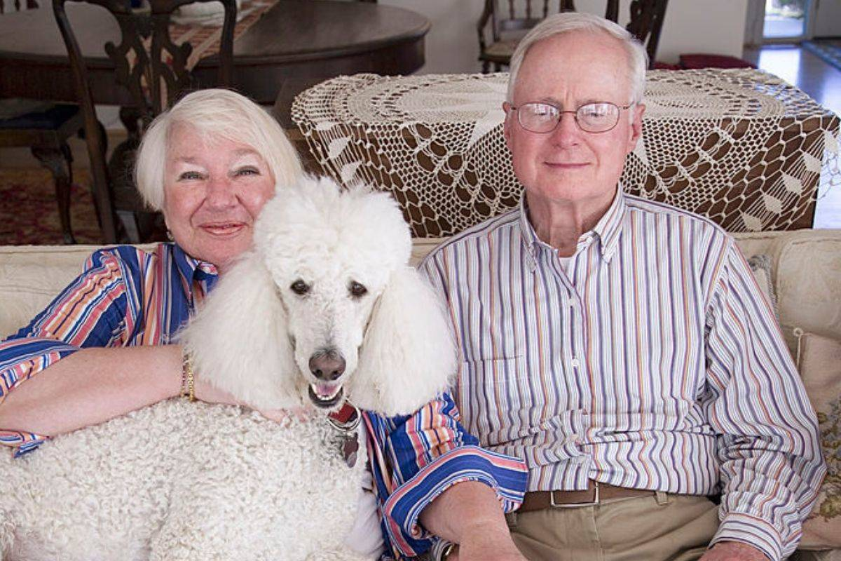 senior citizen couple sit on couch with white poodle on lap
