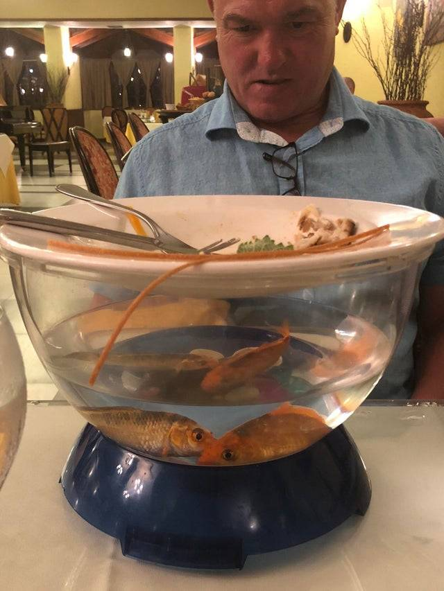 food served on top of fish bowl