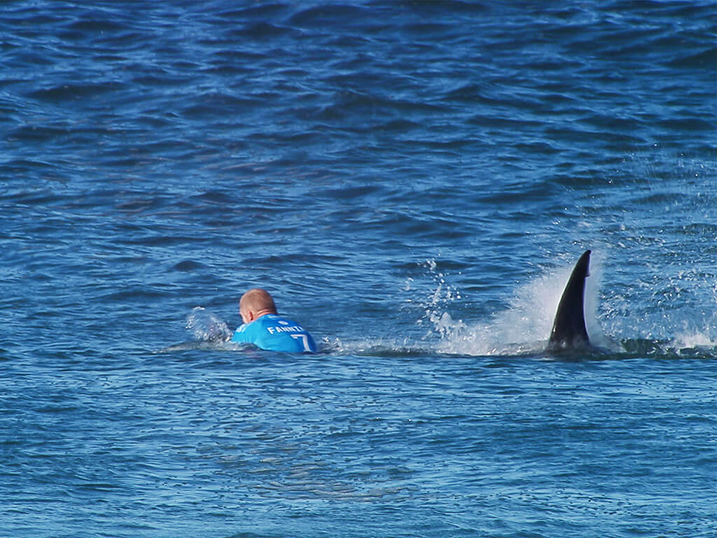 mick-fanning-shark-attack.jpg